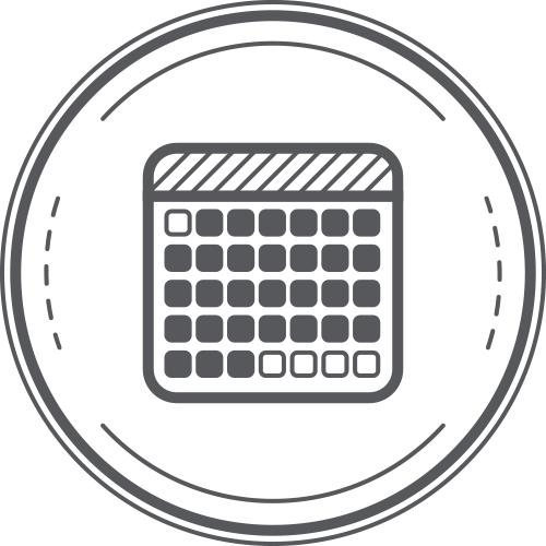 Project Plan calendar icon